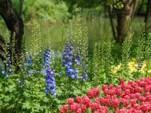 カルトラム種はデルフィニウム属の多年生植物です。