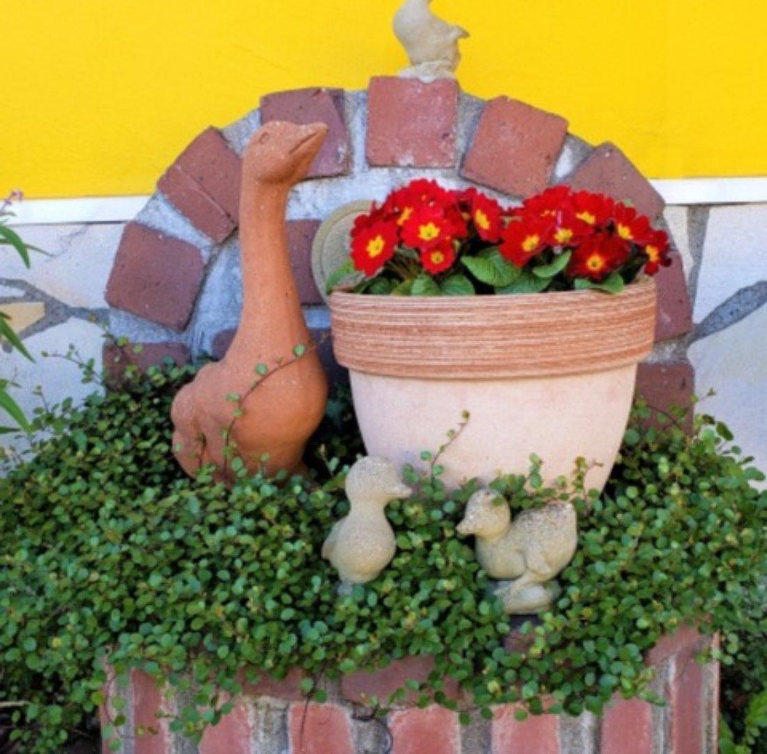 可愛い花壇