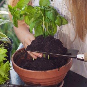 プランターに培養土を足す女の子