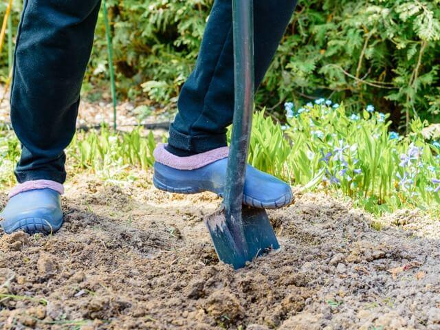 花壇の土にスコップを刺す女性